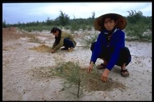 China-farm-land-degraded