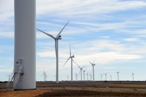Vestas-wind-turbines