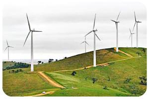 NZ-wind-farm
