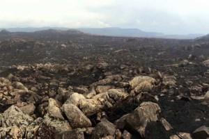 Tasmania-fires-black-landscape