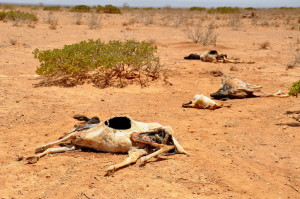 Horn_of_Africa_famine_Oxfam