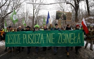 Poland-environmental-activists-Bialowieza-Forest